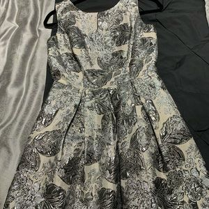 Like New Silver Fit & Flare Dress with Pockets